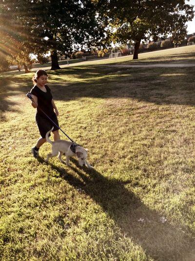 131117-New-Puppy