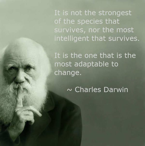131214 Charles_ Darwin_Quote