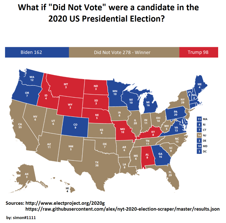 Did-not-vote-2020